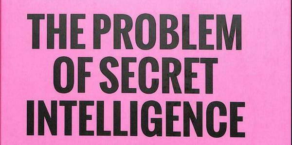 What is Intelligence? a video review by Kjetil Anders Hatlebrekke